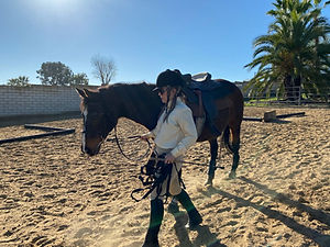 adult horse rider.jpg