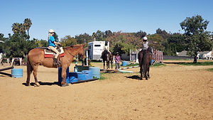 group lessons the riding school.jpg