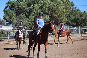 Laddie Group Riding Lesson Tribute.jpg