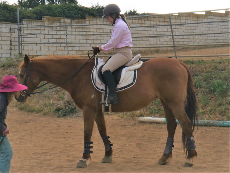 Adult Horse Riding Lessons Beth Boyer Th