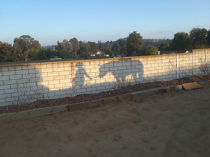 Horsemanship Vista California THe Riding