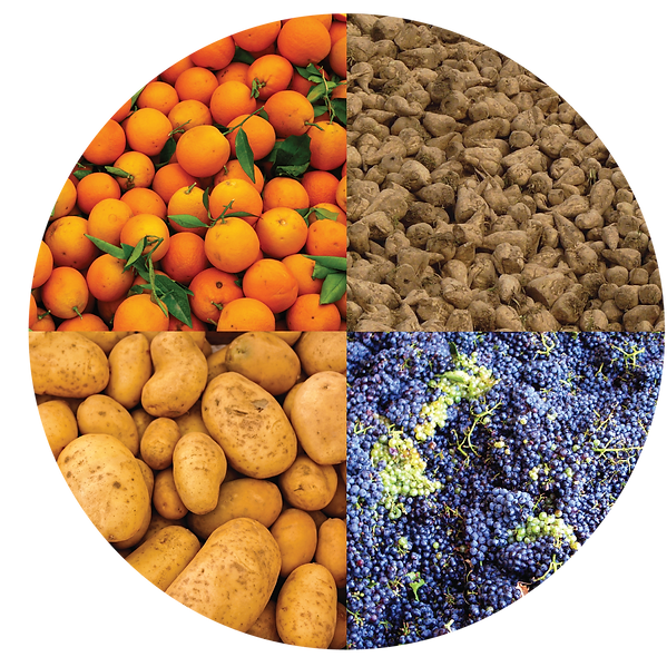 Pectin-cotaining agriculture crops: oranges, sugar beets, potatoes, grapes