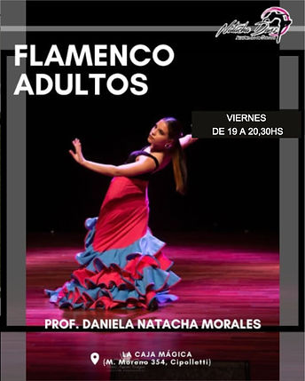 flamenco_edited.jpg