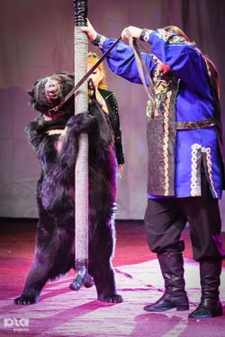 Дрессированные Гималайские медведи.