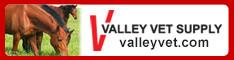 valleyvet.jpg