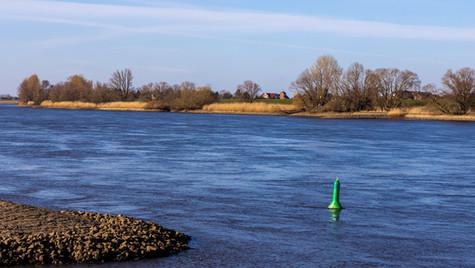 Elbe bei Hoopte