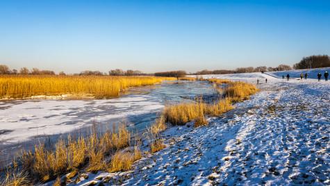 Elbe bei Laßrönne