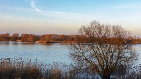 Elbe bei Stöckte