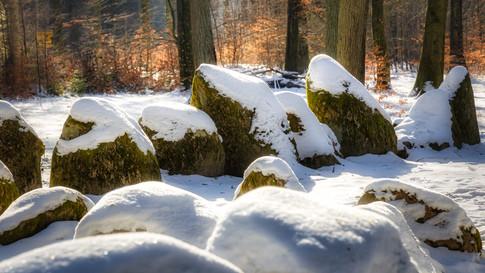 Hünengrab Kleckerwald