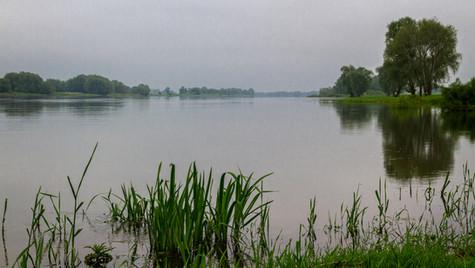Elbe bei Hitzacker