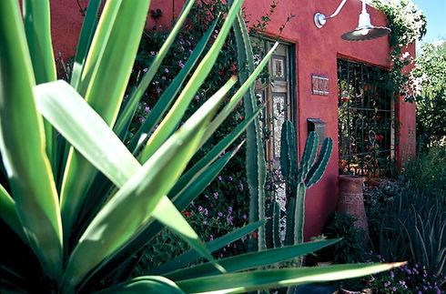 Barrio House with Plants 1.jpg