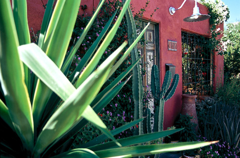 Barrio House with Plants 1.jpg