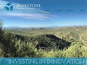 Bluestone Venture Partners  Copy
