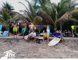 Palomino Surfers