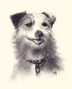happy-chz-graphite-dog-portrait.jpg