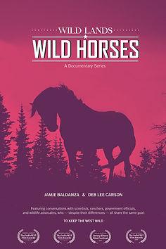 Wild Lands poster.jpg