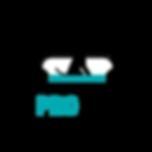 logo-PROPET.png