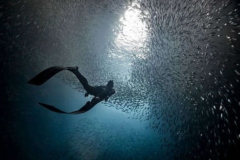 A woman freediver swim underwater with a
