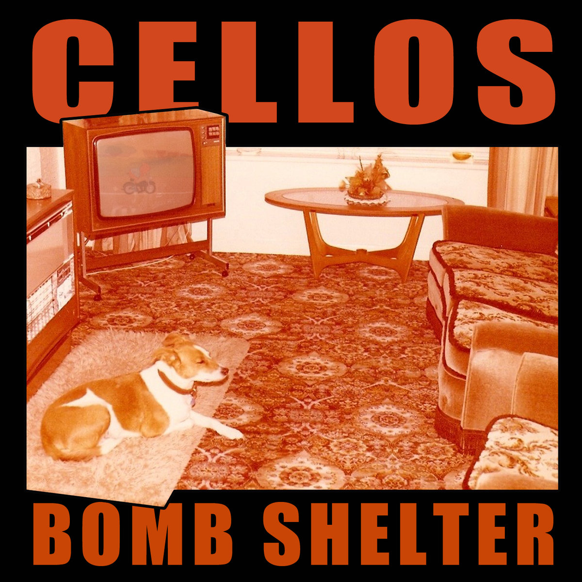 CELLOS - Bomb Shelter