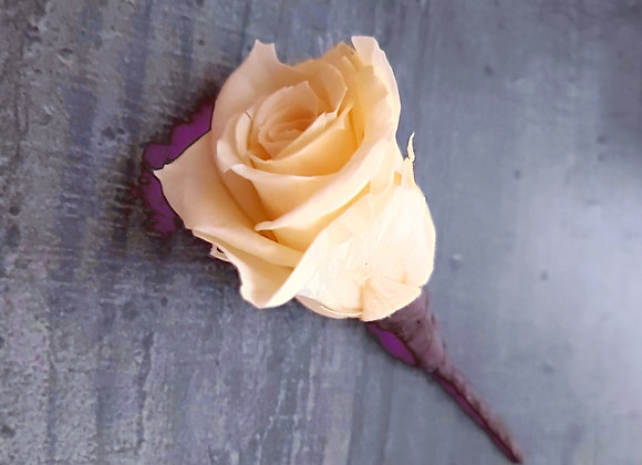 Rose naturelle stabilisée montée sur pic