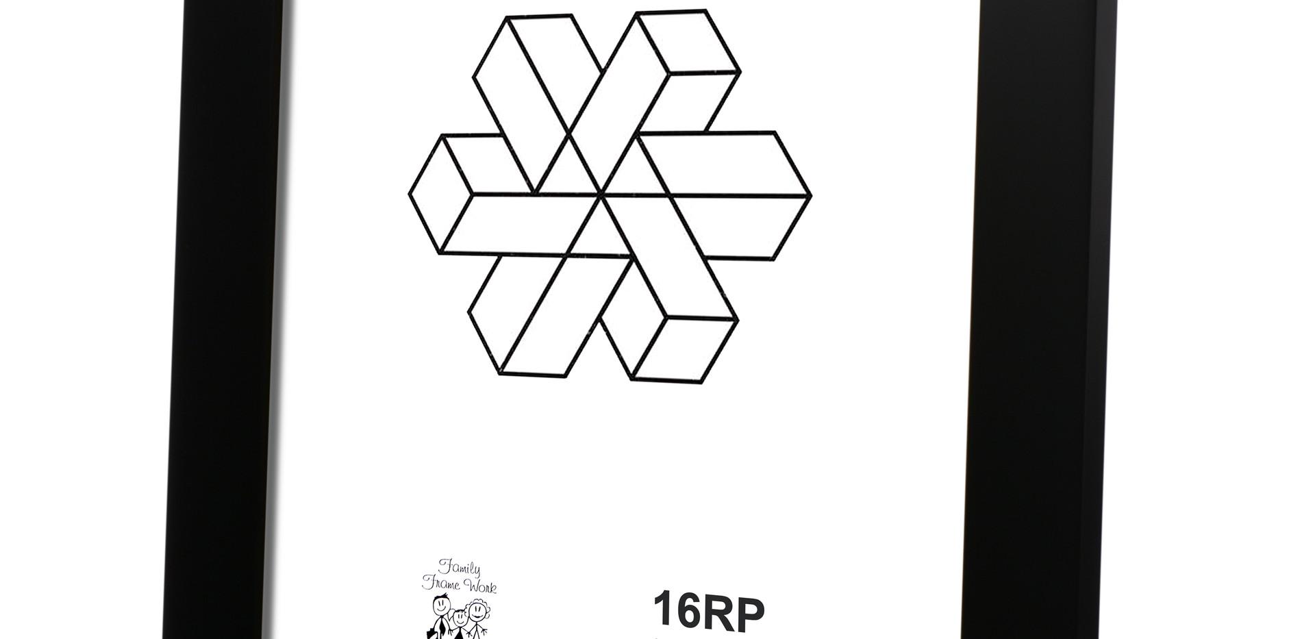 16RP 5006 (3).jpg