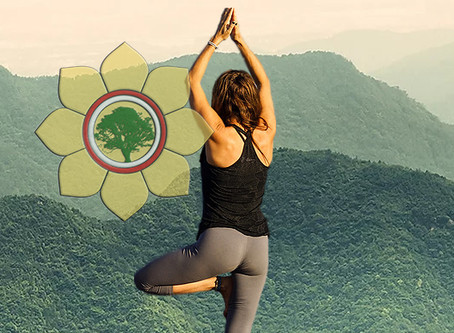HRIT CHAKRA: The secret Sun Chakra