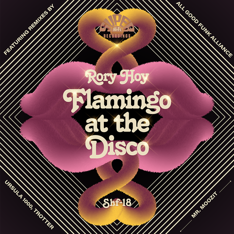 Listen to a preview of Rory's New Single 'Flamingo At The Disco'
