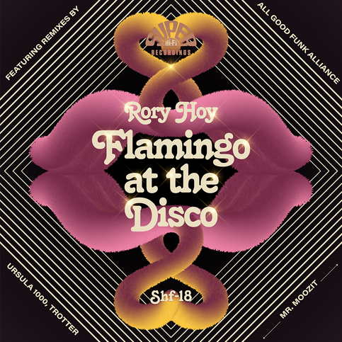 NEW SINGLE - 'Flamingo At The Disco' Out July 6th 2018!