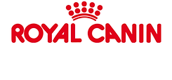 Royal Canin Dried Cat Food Canned Cat Food Healthy