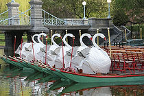 Boston - Swan Boats.jpg