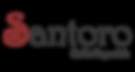 LogoSitePNGSantoro.png