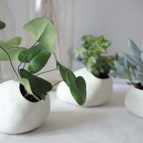 planters planters