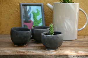 pots à plantes grasses