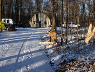 Happy Thanksgiving From the Woodlot-Where the Sidehill Gouger Has Reappeared.