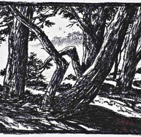 JUILLARD : Les arbres