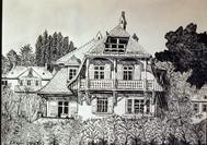 Pekari 1983_2