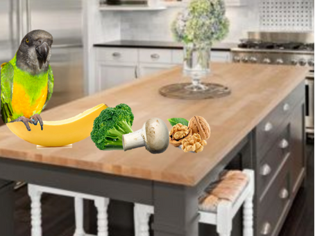 Coco Calling No. 124 - The Broccoli, the Mushroom, the Walnut and the Banana