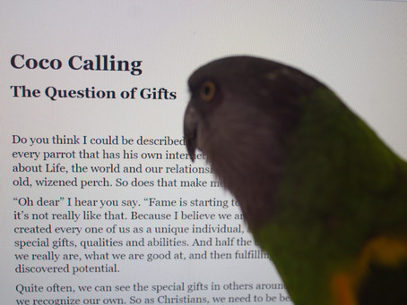 Coco Calling: No. 48 - The Question of Gifts