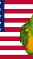 Coco Calling No. 125 - Parrots, Politics and Presidents