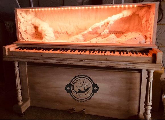 Unique Desert Vivarium in Piano from 1908