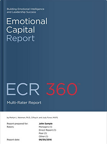 Roche Martin Emotional Intelligence Training