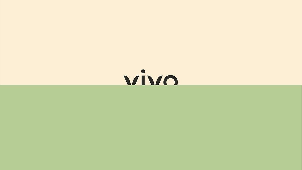 VIVIO_MADE_BY_INVADE.jpg