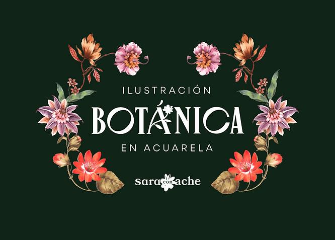 ILUSTRACION_BOTANICA_ACUARELA_SARACONACH