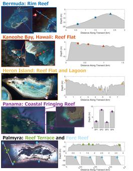 Reef Variability.png