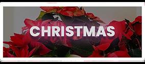 icon-christmas.png