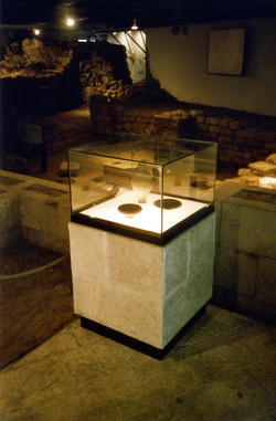 Freestanding showcases in front of t