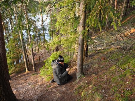 Mets räägib, kui sa kuulata oskad