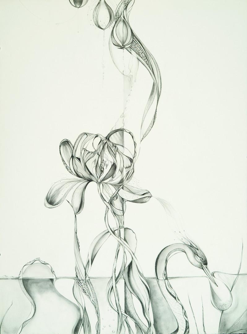 figflower.jpg