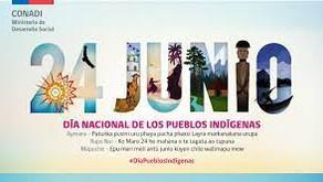 Saludo del día de los pueblos originarios, por nuestra profesora Sandra Toro.