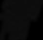 ShowPro Лого